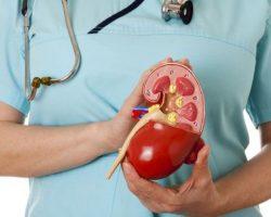 Suy thận: Nguyên nhân, triệu chứng, chẩn đoán và điều trị
